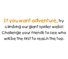 If you want adventure, try climbing our giant spider webs! Challenge your friends to see who will be the first to reach the top.