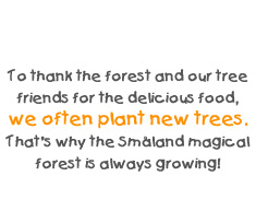 To thank the forest and our tree friends for the delicious food, we often plant new trees. That's why the Småland magical forest is always growing!